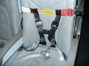 CARES Airplane Safety Harness